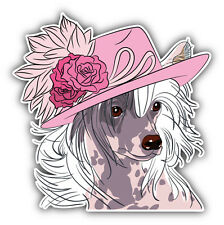 hipster Chinese Crested Dog Car Bumper Sticker Decal 5' x 5'