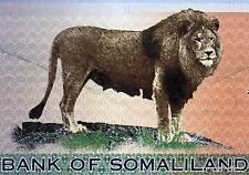 SOMALILAND  billet de 1000 shillings LION CHAMEAU 2006  Pick Cs1