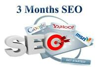 3 months full SEO plan and boost your new website