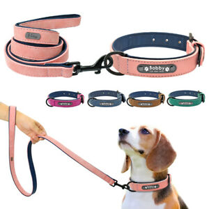 Soft Padded Personalised Dog Collar and Lead Custom Dog ID Tag Pet Walking Leash