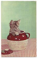 LITTLE BEANSIE Tiger Stripe KITTEN Bean Pot Brown Jug Vintage Postcard Cat 1959