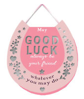 Good Luck Hanging Plaque With Ribbon More Than Words Gift