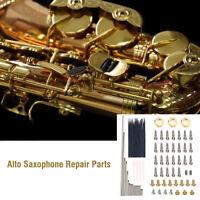 1 Set Alto Sax Repair Parts Screws + Sax Springs Tools Kit For Alto Saxophone IS