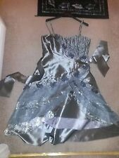 Cherlone dress,size 14,silver,lined,zip,perfect for celebrations, new with tag