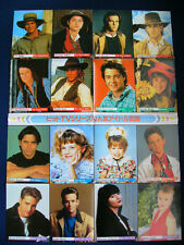 1995 THE YOUNG RIDERS FULL HOUSE BLOSSOM BEVERLY HILLS, 90210 Japan VINTAGE POST