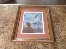 M. Caroselli Framed Matted Print '' Eagle Nesting ''