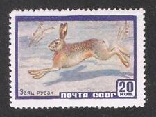 Russia/USSR 1960,Rabbit Hare,Sc 2213,VF MNH**