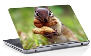 Squirrel Printed Laptop Skin Cover Multi-Color Notebook Skin Sticker Cover Art