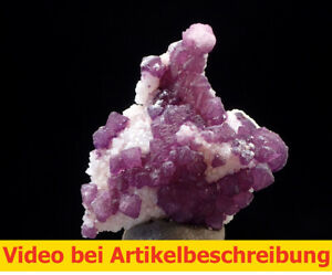 8212 Fluorit Fluorite Quarz ca 3*3,5*2 cm La Fluorita Dulcita Arizona USA MOVIE