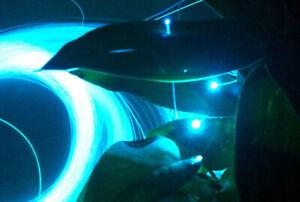 RGB Wireless Dimmable Led Fiber Optic Star Light Fr Home Car Starlight Headliner