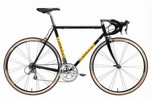 LeMond Buenos Aires Road Bicycle 53CM frame Excellent condition
