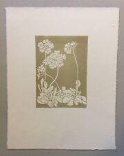 Arthur Illies, Alpenprimel, Radierung, 1897, Nachlass