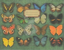 "cynoclub Portfolio ""Schmetterlinge"": Mappe für DIN A6 Postkartenmappe"