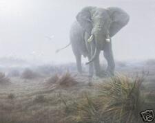 Denizen of the Mist by Daniel Smith Lmt Edition Print