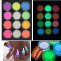 12 Colors Acrylic Fluorescent Powder Glow In the Dark Nail Art Manicure Tips