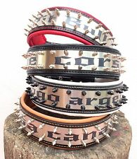 Personalized 2.5 inch wide dog collar. Stainless steel writing. M to XXL size!
