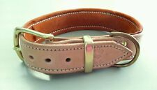 Medium Natural Leather Dog Collar & a Suede Padded Inner Lining with Brass