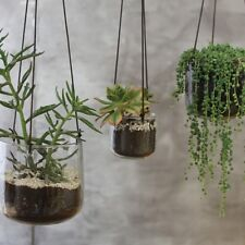 1 x Large Clear Glass Hanging Planter, Plant Pot with String Hanger, Nkuku Viri