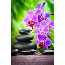 Magnete Da Frigorifero decocrazione Ciottolo e orchidea 60x90cm ref 6259 6259