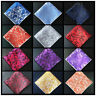 Newest  Paisley Floral Men Silk Pocket Square Hanky Wedding Party Handkerchief