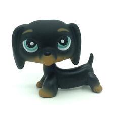 Hasbro Littlest Pet Shop #325 Black Dachshund Dog Chien Teckel Puppy Blue Eyes