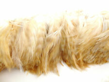 """50 BLEACH GINGER BARRED ROOSTER HACKLE FEATHER 3""""L-5""""L"""