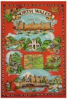North Wales Cotton Tea Towel by Samuel Lamont
