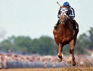 LOT of (2) TWO SECRETARIAT 8 X 10 PHOTO HORSE RACING RON TURCOTTE