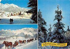 BT4574 Horse chevaux winterzauber Ramsau a dachstein Austria