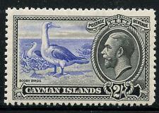 Cayman Islands Birds