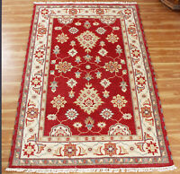 Hand Knotted Wool Area Rugs Traditional Carpet Indian Handmade Red Rug 5x8