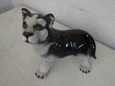 Dog ceramic figurine Siberian Husky statuina cane ceramica 12cm
