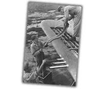 loading ammunition p-47 Warbird and classic aircraft  WW2 War Photo 4 x 6 inch Y