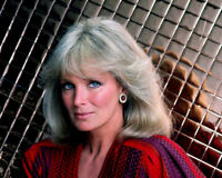 "LINDA EVANS IN THE ABC TV SERIES ""DYNASTY"" - 8X10 PUBLICITY PHOTO (OP-306)"