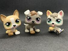 Littlest Pet Shop LPS Authentic 1876 1877 1878 Baby Husky Puppy Triplets Rare