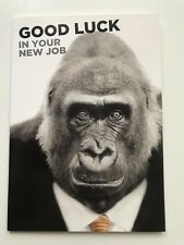 Good Luck in your New Job Funny Gorilla Monkey Large Greeting Card Animal Lovers