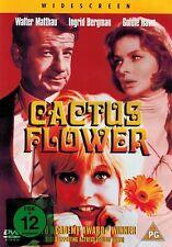 DVD NEU/OVP - Die Kaktusblüte - Walter Matthau, Ingrid Bergmann & Goldie Hawn
