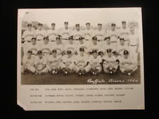 "1950 Buffalo Bisons Team Photograph - Black & White, 8"" x 10"""