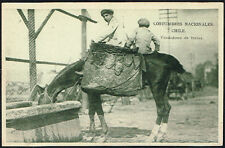 758 CHILE COSTUMBRES VENDEDORES DE FRUTAS FRUITS STREET SELLER HORSE POSTCARD