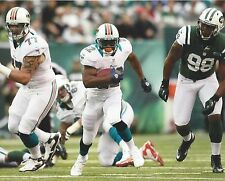 REGGIE BUSH 8X10 PHOTO MIAMI DOLPHINS PICTURE NFL FOOTBALL GAME ACTION