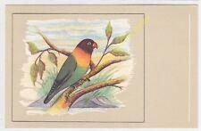 CP POSTCARD Oiseau Bird Agapornis personata personata