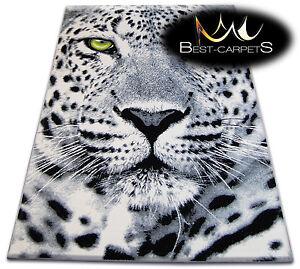 ORIGINAL ANIMAL THEME CARPETS 'FLASH' LEOPARD Print Area CHEAP Rugs Carpet