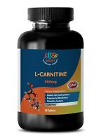 Branched Chain Amino Acids - L-CARNITINE 500MG - Muscle Volume Booster - 1 Bot