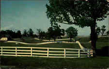 USA postcard ~1970 Calumet Farm bei Lexington color Ansichtskarte Amerika