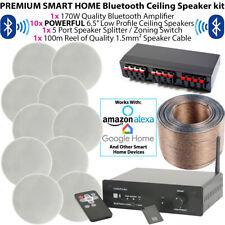 Premium 10x 80W Stéréo haut-Parleur de plafond Kit avec amplificateur fond