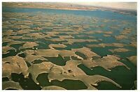 Vintage Aerial View Sand Dunes at Potholes Reservoir Washington Postcard 1969