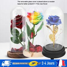 Rose Éternelle Dôme à LED Fleurs Soie Cadeaux Décorations Maison Noël