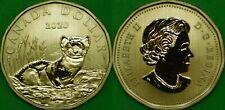 2020 Canada Black-Footed Ferret Dollar Graded as Specimen From Original Set