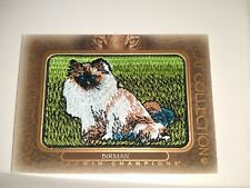 Birman Fc-17 2020 Ud Goodwin Champions Cat Collection Tier 1 Animal Patch Frship