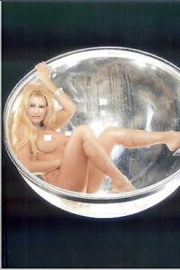 Rena Mero FIT BODY Photo #1 Lesnar Sable